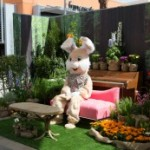 easter bunny on a bench