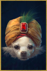 dog in turban