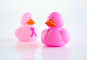 two pink ducks