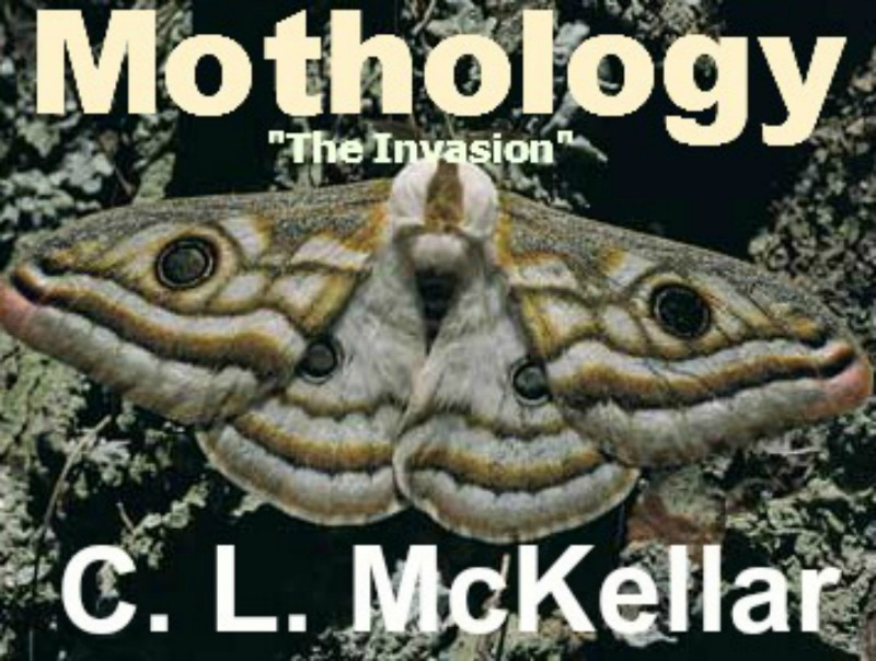 book cover moths