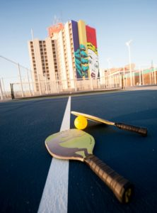 pickleball paddles and ball